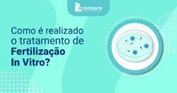 Como é o processo de tratamento da fertilização in vitro